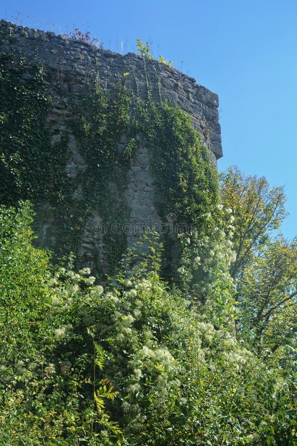 De oude ruïnes van de kasteelmuur royalty-vrije stock afbeeldingen