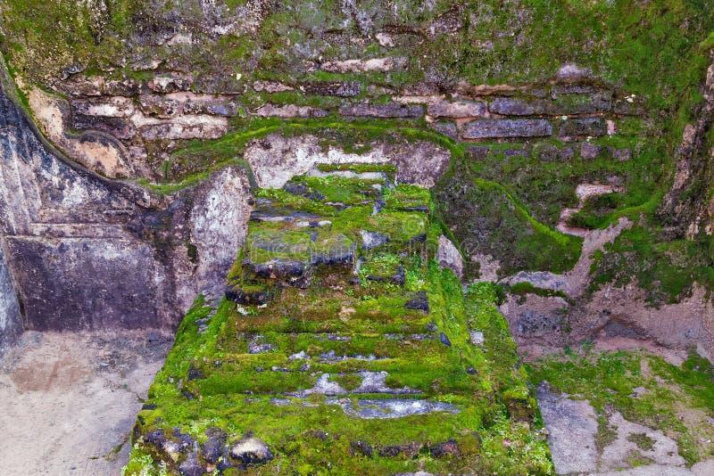 De oude ruïnes van het baksteenmos in Polonnaruwa-Unesco van de stadstempel royalty-vrije stock afbeelding