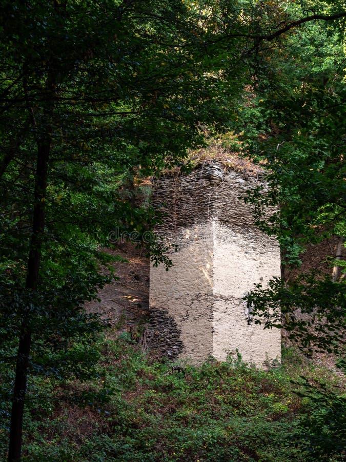 De oude ruïnes van de kasteeltoren in het Europese bos royalty-vrije stock fotografie
