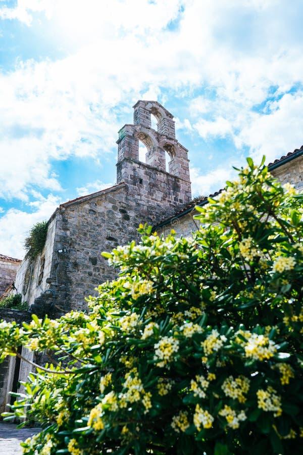 De Oude Stad van Budva, Montenegro - een oude steenkerk die de vesting van Budva aan het Adriatische Overzees aanhangen Bloemen e royalty-vrije stock foto's