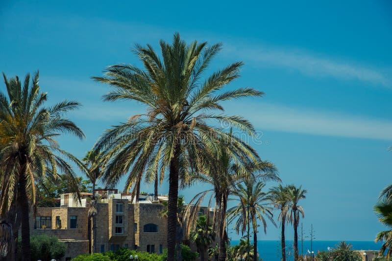 De oude stad van Tel Aviv royalty-vrije stock afbeelding