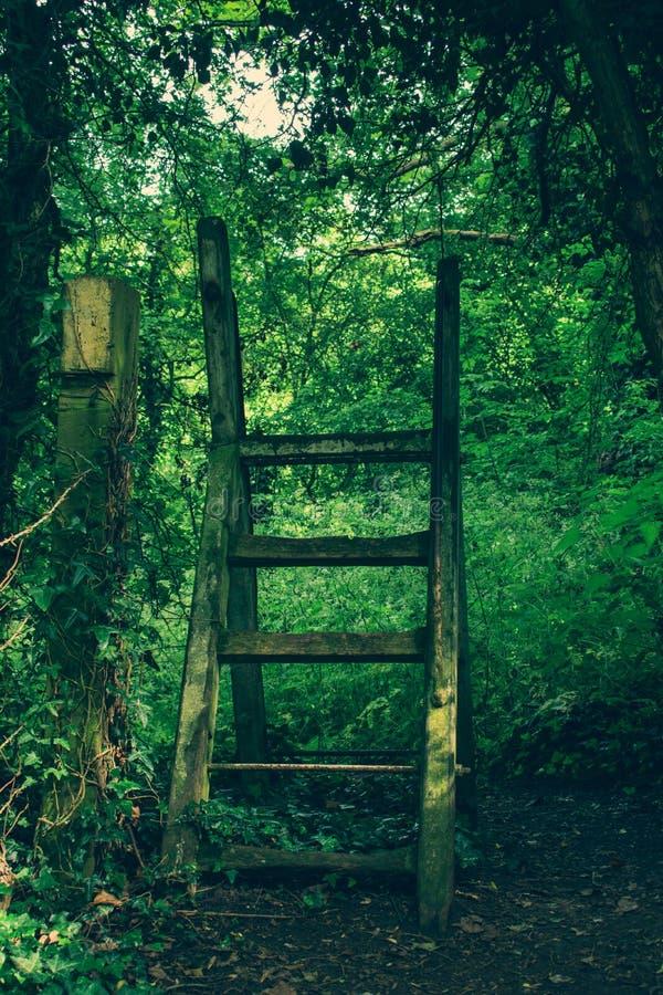 De oude stappen van de ladderstijl op voetpad royalty-vrije stock foto