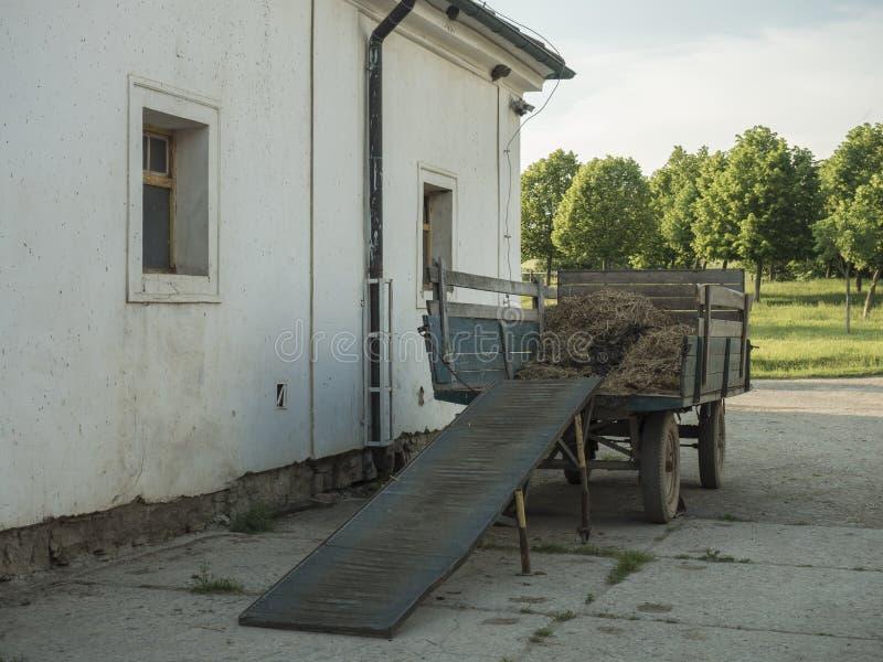 De oude vrachtwagen met stro die zich vooraan op schuur, wijnoogst bevinden ziet, langzaam verdwenen kleuren eruit stock fotografie