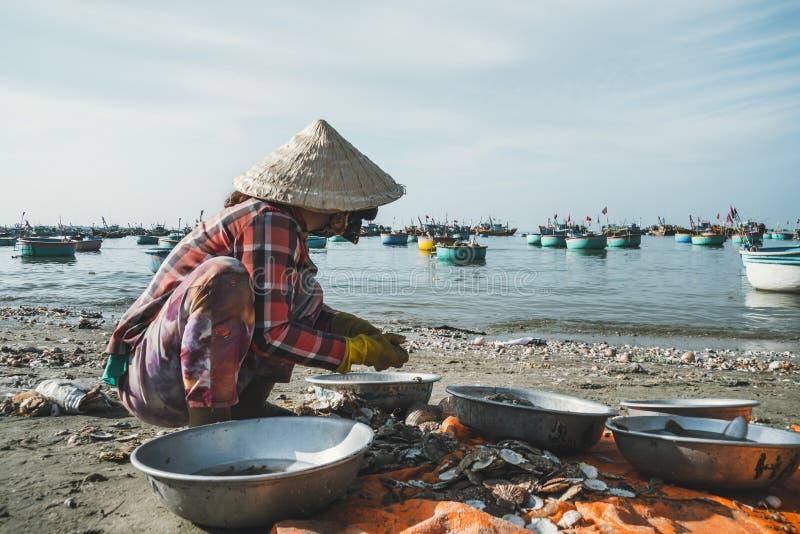 de oudere Vietnamese vrouwen met traditionele hoeden maken kammosselen schoon vissersboten op overzees die dichtbij dorp dicht bi stock afbeelding