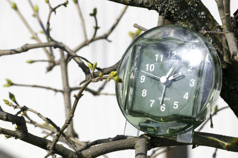 De overgang naar de zomertijd, de aankomst van de lente, de klok op de achtergrond van takken met het bloeien ontluikt op heldere stock afbeelding