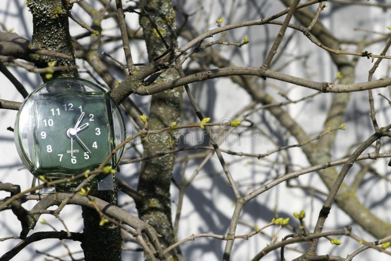 De overgang naar de zomertijd, de aankomst van de lente, de klok op de achtergrond van takken met het bloeien ontluikt op heldere stock foto's