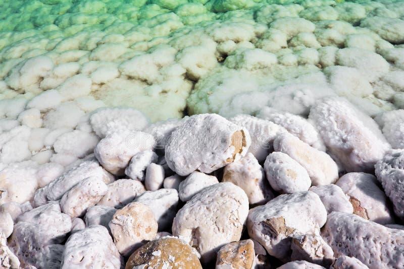 De overwoekerde stenen zoute wateren van het dode overzees stock foto