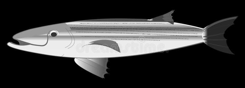 Download De Overzeese Baarzen Van De Trofee Stock Illustratie - Illustratie bestaande uit visserij, spoel: 281259