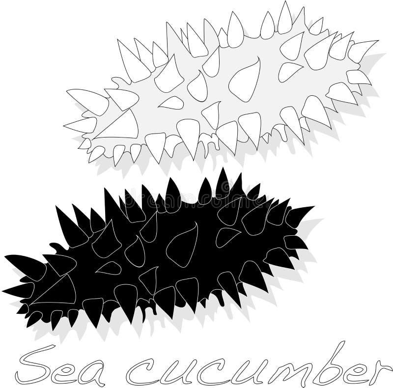 De overzeese komkommer is geïsoleerd op witte achtergrond vector illustratie