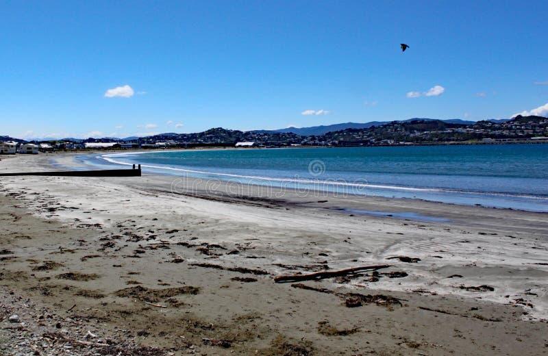 De overzeese overlappingen zacht op het zandige strand bij Lyall-Baai dichtbij Wellington in Nieuw Zeeland royalty-vrije stock afbeeldingen