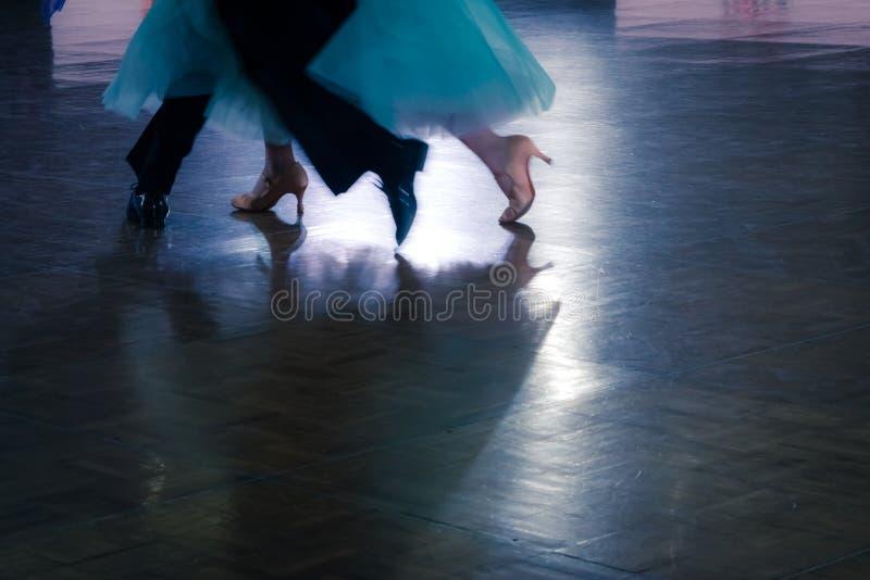 de paardansers in een dans brengen op de vloer onder de aandacht royalty-vrije stock afbeeldingen