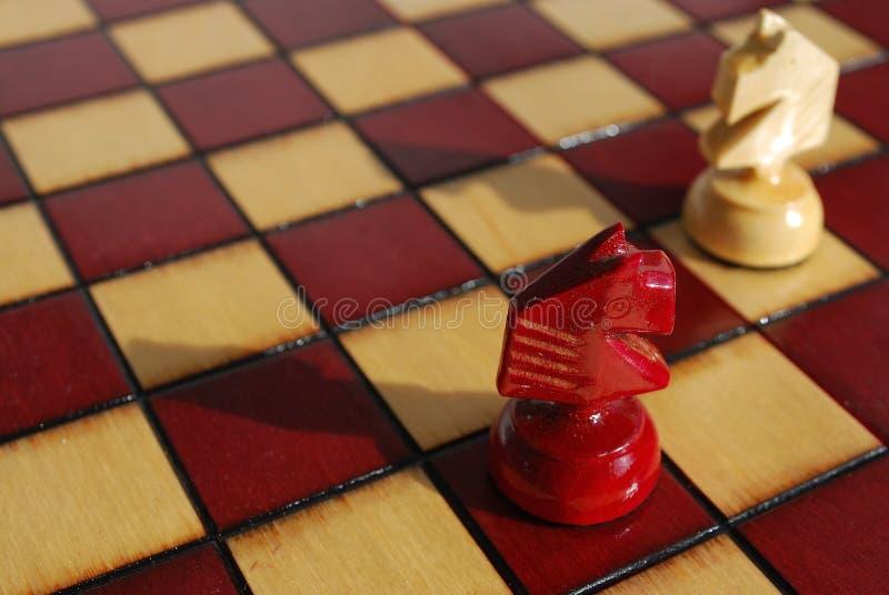 De paarden van het schaak stock afbeeldingen