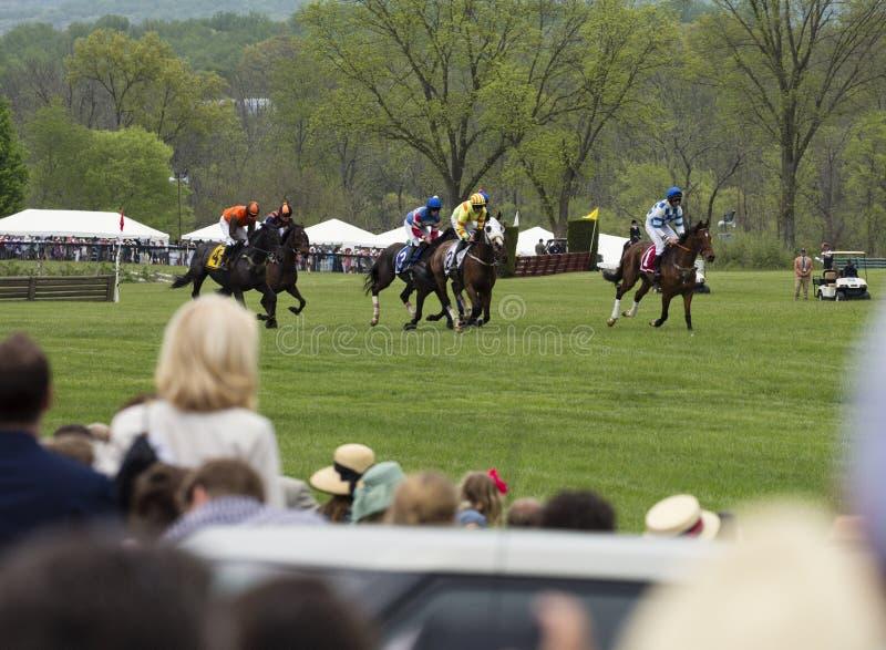 De paarden van menigtehorloges stellen Virginia Gold Cup in werking royalty-vrije stock fotografie
