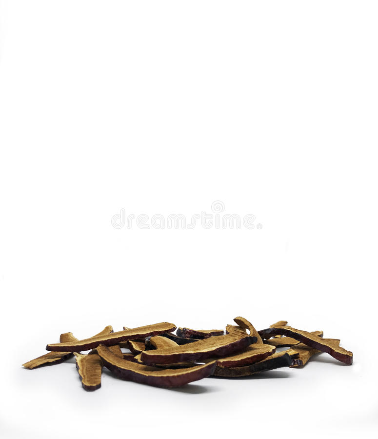 De paddestoel van Lingzhi royalty-vrije stock foto