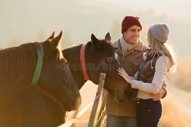 De paddock van het paarpaard royalty-vrije stock foto's