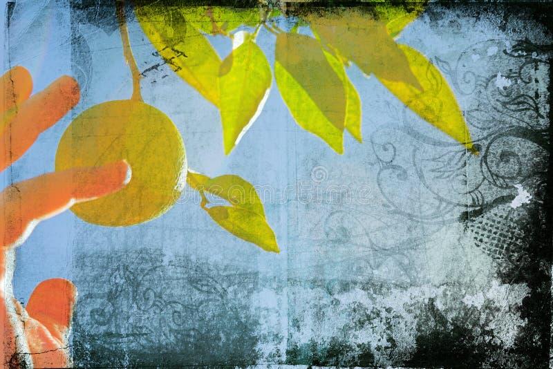 De pagina van Grunge met citroen stock illustratie