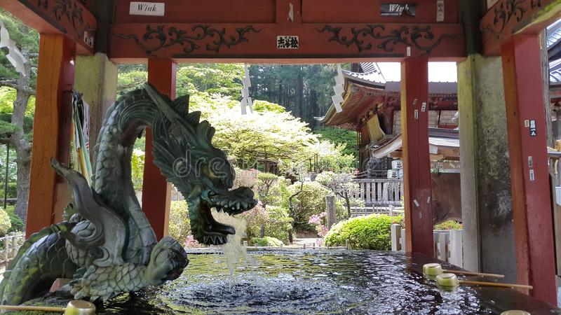 De Pagode van MT Fuji royalty-vrije stock foto