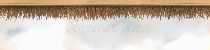 De palm met stro bedekt dak stock afbeelding