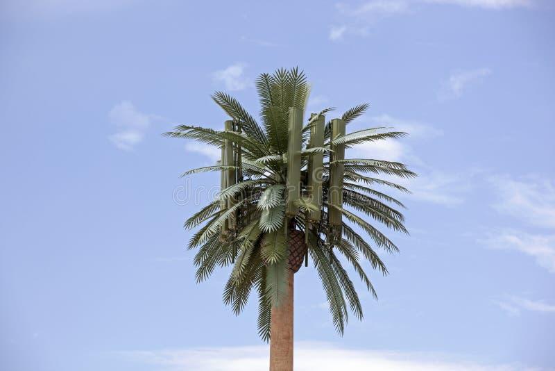 De Palm van de celtoren stock afbeeldingen
