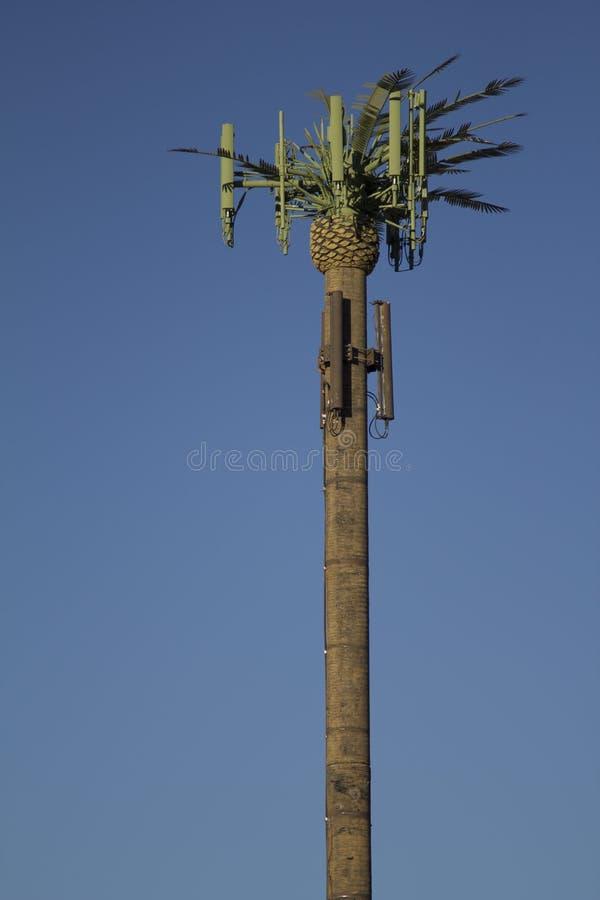 De Palm van de Toren van de cel stock afbeeldingen