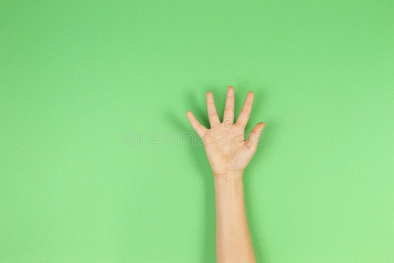 De palm van de jong geitjehand of het tonen van vijf vingers op groene achtergrond stock foto's