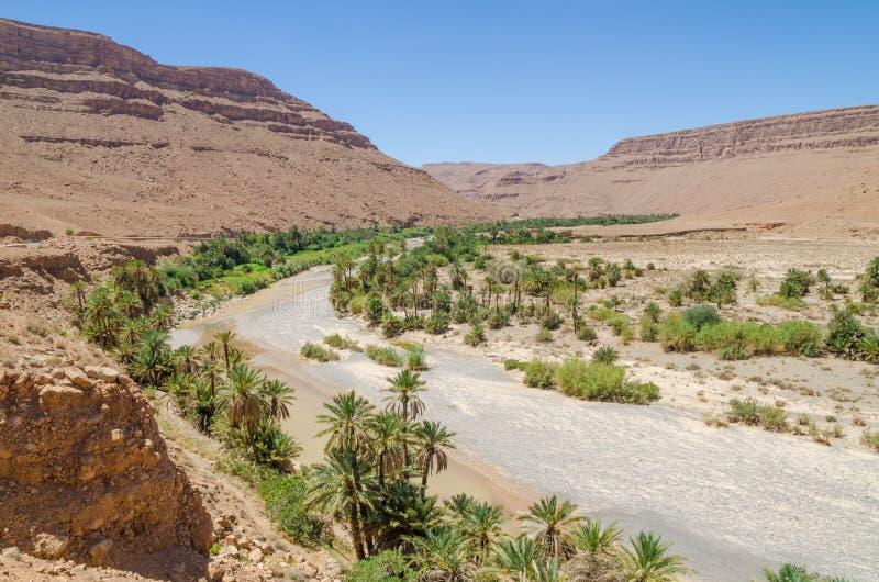 De palm voerde droog rivierbed met rode oranje bergen dichtbij Tiznit in Marokko, Noord-Afrika stock afbeelding