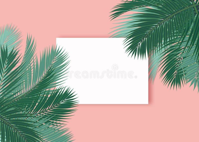 De palmen doorbladert leeg kaart roze concept als achtergrond stock illustratie