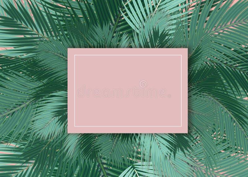 De palmen doorbladert leeg kaart roze concept als achtergrond royalty-vrije illustratie