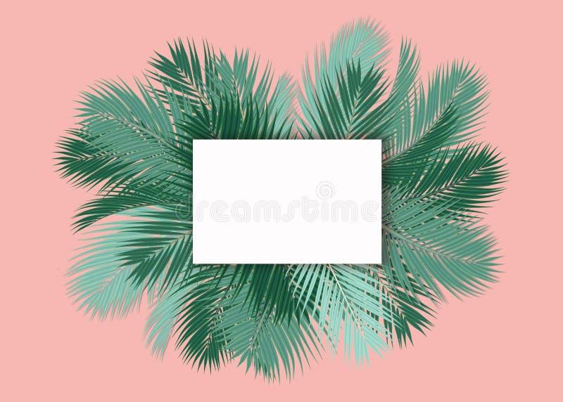 De palmen doorbladert met leeg kaart roze concept als achtergrond stock illustratie