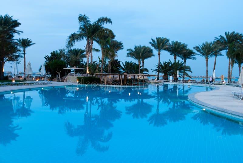 De palmen overdenken kalm poolwater De waterspiegel denkt na Het zwembad wijst hotel op landschap Bezinning over het water royalty-vrije stock foto's