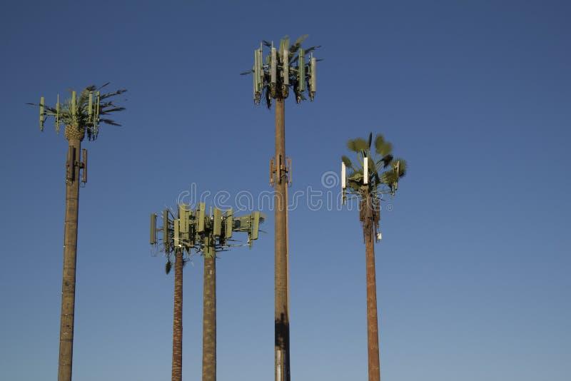De Palmen van de Toren van de cel stock afbeelding