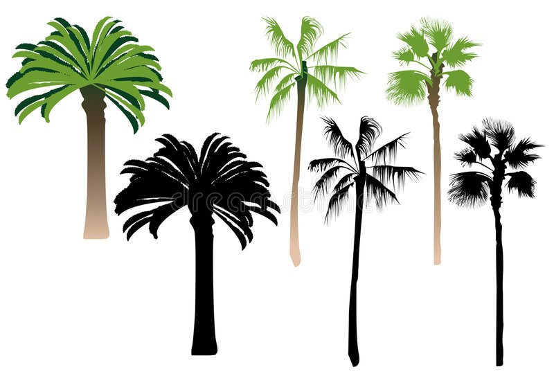 De palmen van het silhouet stock illustratie