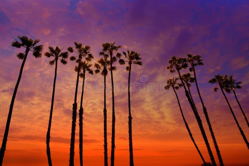 De palmenzonsondergang van Californië met kleurrijke hemel stock afbeeldingen