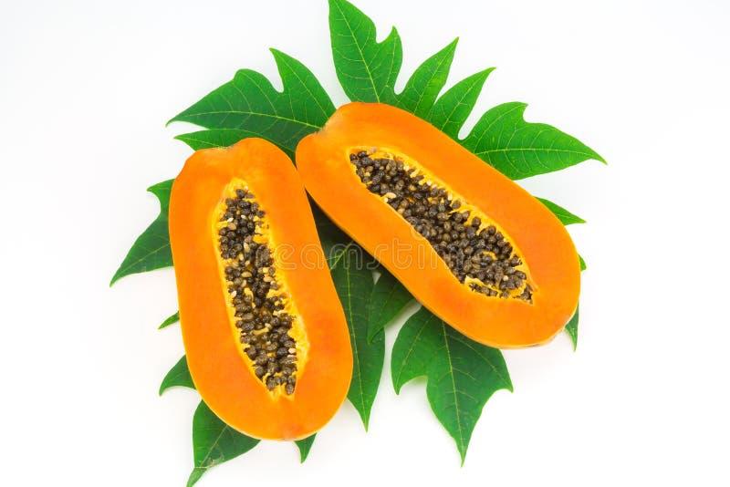 De papajafruit van de heftbesnoeiing en papajablad stock afbeeldingen