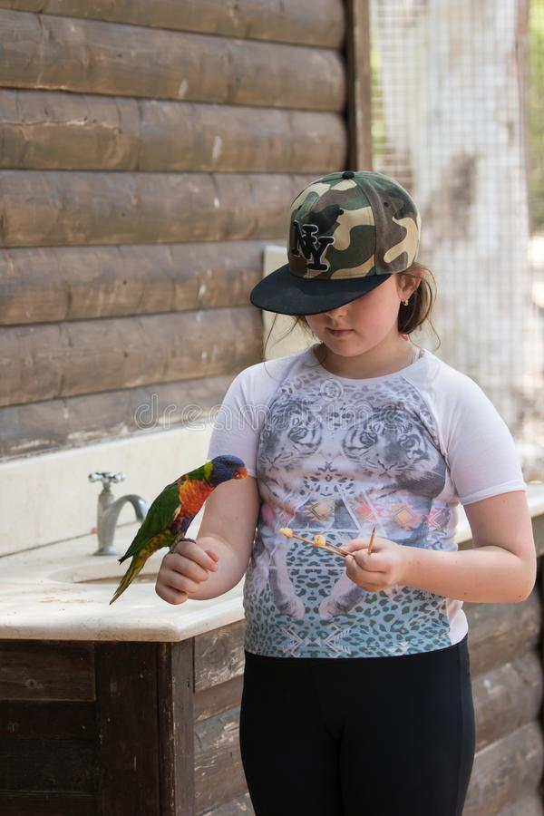 De papegaai Lori - Loriinae - zit op het wapen van het meisje en eet een appel in Gan Guru Zoo in Kibboetsen Nir David in Israël royalty-vrije stock foto's