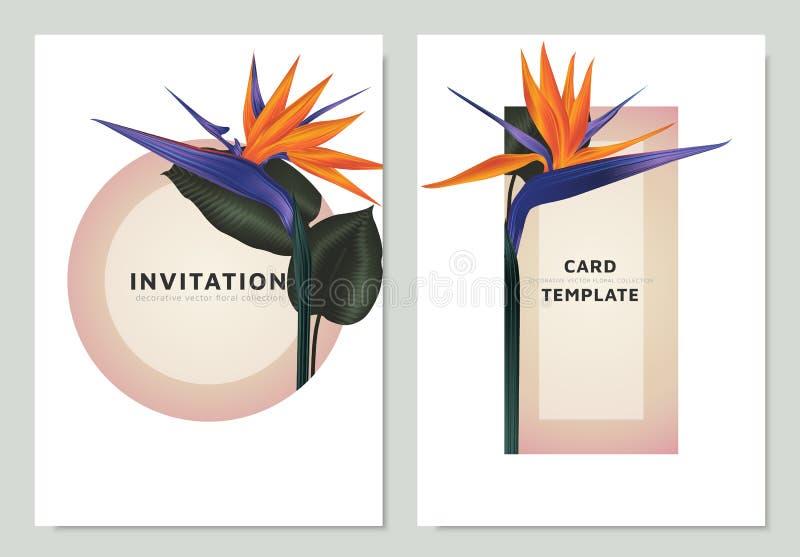 De paradijsvogel bloeit en gaat met roze cirkel en driehoekskader, het malplaatje van de uitnodigingskaart weg royalty-vrije illustratie