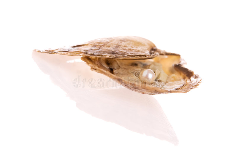 De Parel van de oester royalty-vrije stock foto's