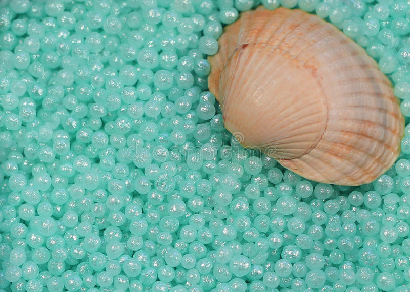 De parels en shell van het kuuroord stock afbeeldingen