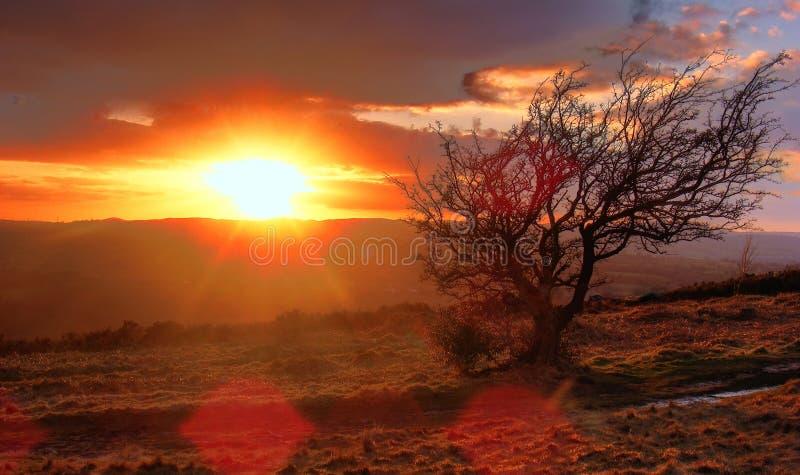 De park-Zonsondergang van het Land van Waun Y Llyn royalty-vrije stock foto