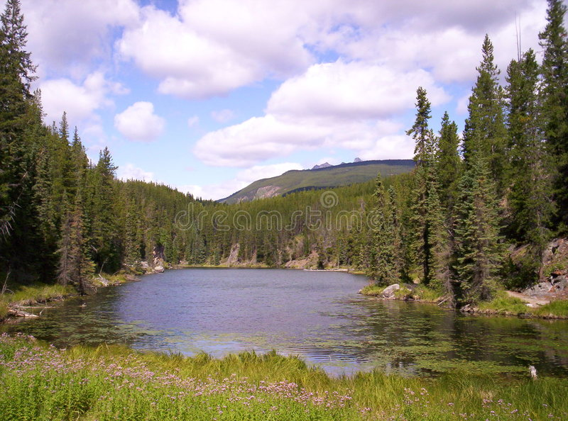 De Parkeerplaats van de Oever van het meer van de berg royalty-vrije stock afbeeldingen