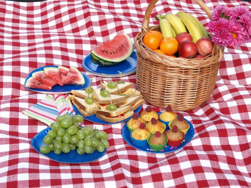 De partij van de picknick stock fotografie