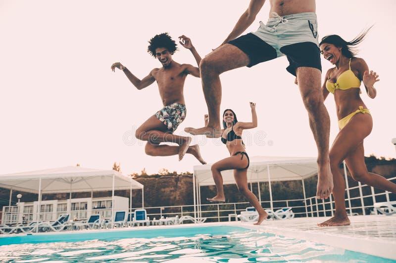 De partij van de pool stock afbeeldingen