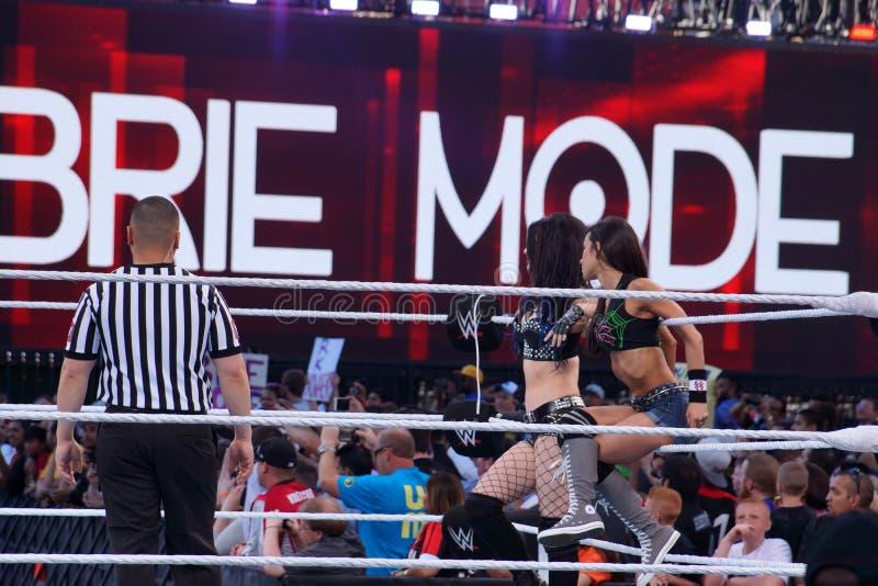 De partnersdiva's van het markeringsteam zitten AJ Lee en Paige op kabels in ring stock fotografie