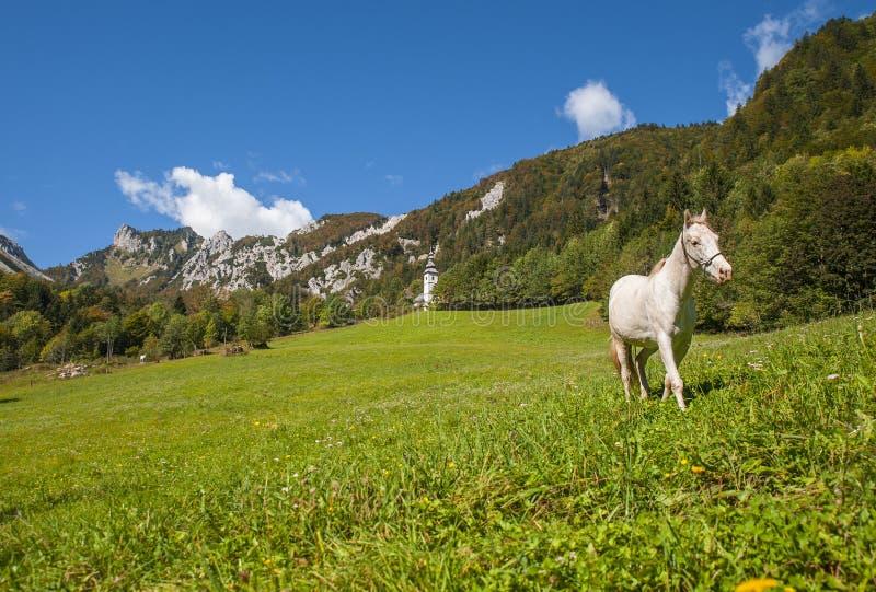 De pas van de Ljubeljberg, aard, Slovenië royalty-vrije stock afbeelding