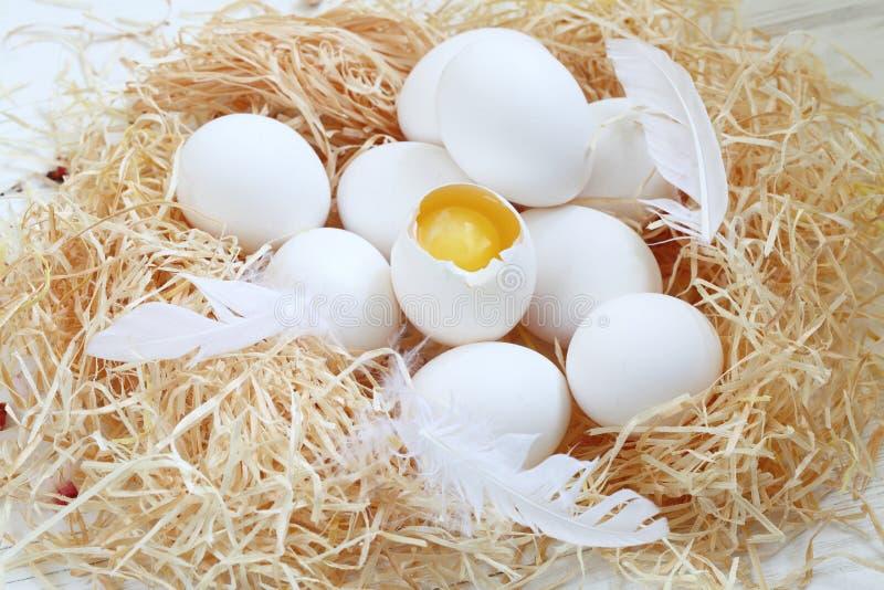 De Pascua todav?a de los huevos vida fotos de archivo
