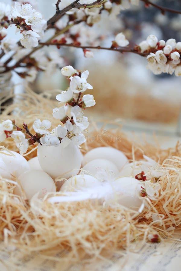 De Pascua todav?a de los huevos vida imagen de archivo