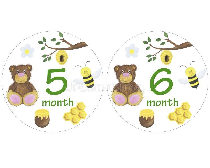 De pasgeboren babystickers voor de zitting van de de illustratiefoto van de maandenwaterverf ontwerpen stickers die de uitnodigin vector illustratie