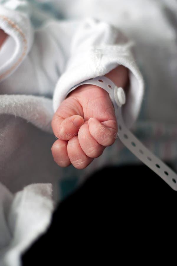 De pasgeboren Hand van de Baby royalty-vrije stock fotografie