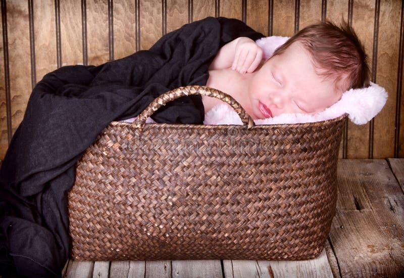 Download De Pasgeboren Slaap Van De Zuigelingsbaby Stock Afbeelding - Afbeelding bestaande uit mooi, lying: 29509405