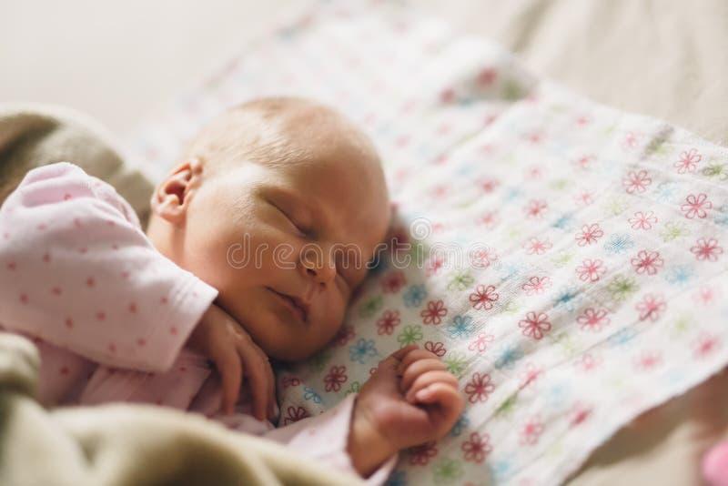 De pasgeborenen hebben heel wat rust nodig royalty-vrije stock afbeelding